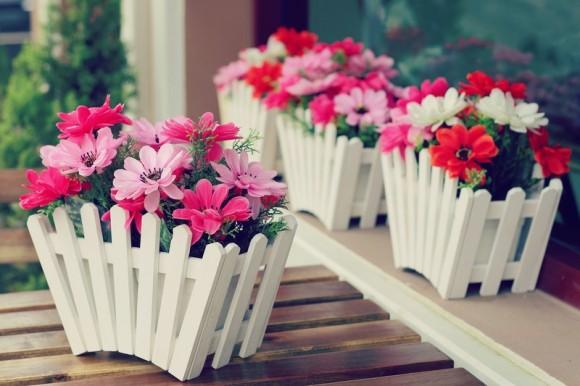 """""""Flores por todos os lados, flores em tudo o que eu vejo"""""""